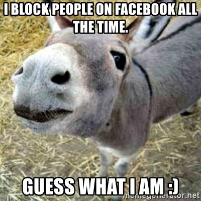 Assumptions Donkey - I block people on Facebook all the time. Guess what I am :)