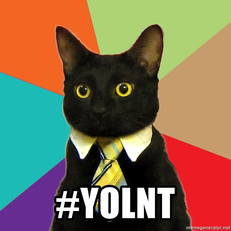 Business Cat - #YOLNT