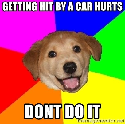Advice Dog - getting hit by a car hurts dont do it