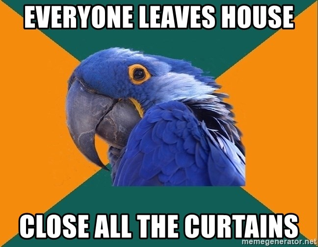 Paranoid Parrot - everyone leaves house close all the curtains