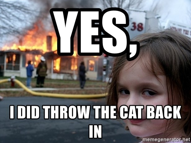 Disaster Girl - yes, I did throw the cat back in