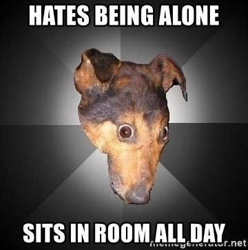 Depression Dog - hates being alone sits in room all day