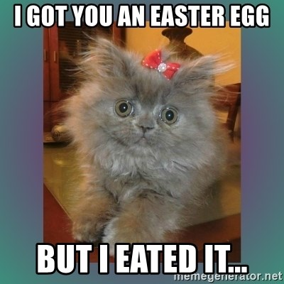 cute cat - I got you an easter egg but i eated it...