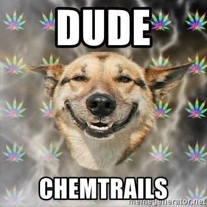 Stoner Dog - dude chemtrails