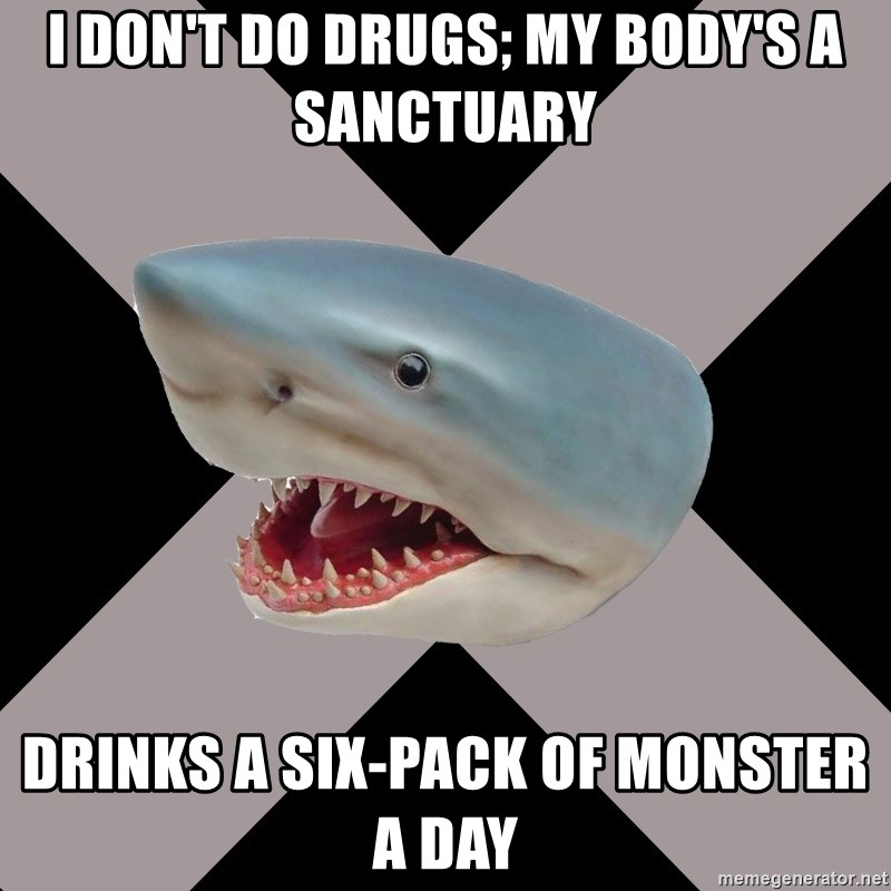 Straight Edge Shark - I don't do drugs; my body's a sanctuary drinks a six-pack of monster a day