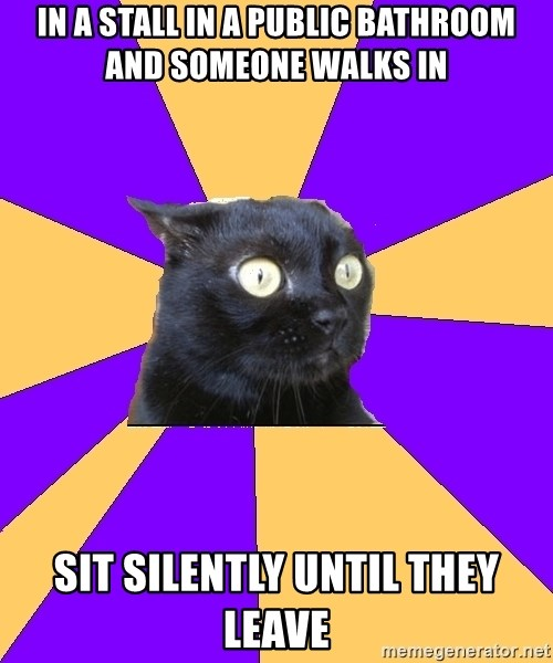 Anxiety Cat - In A stall in a public bathroom and someone walks in sit silently until they leave
