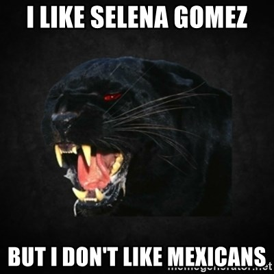 Roleplay Panther - i like selena gomez but i don't like mexicans