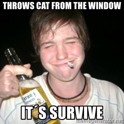 Good luck drunk - throws cat from the window it´s survive