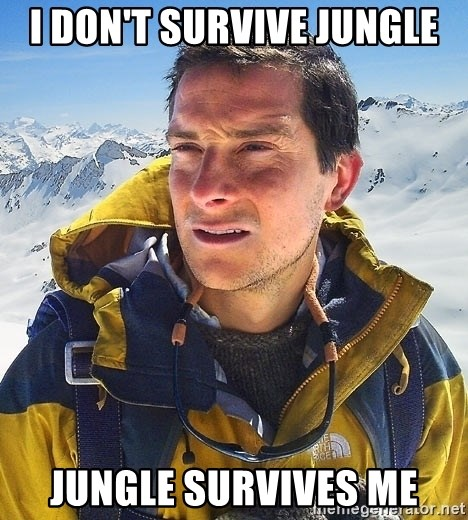 Bear Grylls Loneliness - I DON'T SURVIVE JUNGLE JUNGLE SURVIVES ME