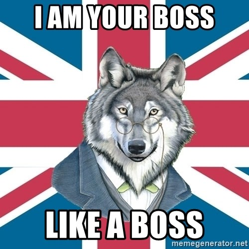 Sir Courage Wolf Esquire - I am your boss  like a boss