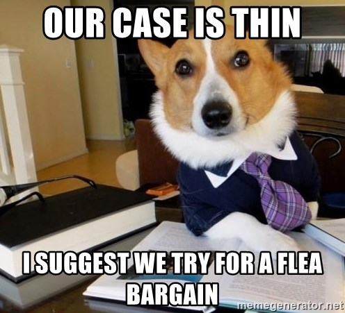 Dog Lawyer - our case is thin i suggest we try for a flea bargain