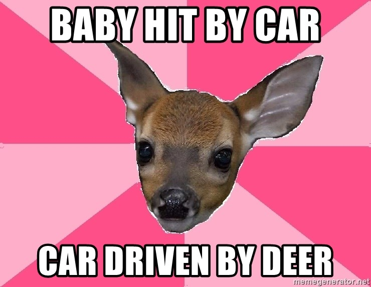Unnecessary Violence Deer - baby hit by car car driven by deer