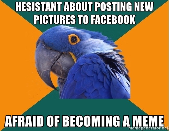 Paranoid Parrot - HESISTANT ABOUT POSTING NEW PICTURES TO FACEBOOK AFRAID OF BECOMING A MEME