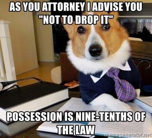 """Dog Lawyer - as you attorney i advise you """"not to drop it"""" Possession is nine-tenths of the law"""