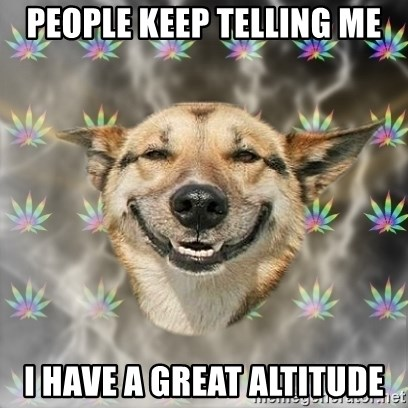 Stoner Dog - PEOPLE KEEP TELLING ME I HAVE A GREAT ALTITUDE