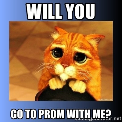 puss in boots eyes 2 - Will you go to prom with me?