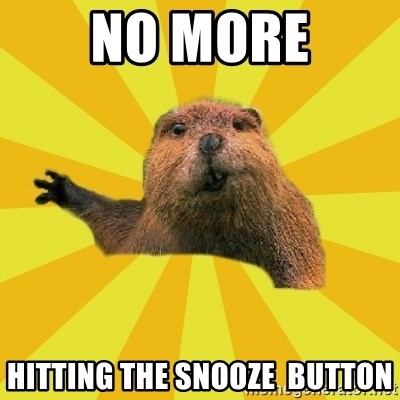 grumpy beaver - No more Hitting the snooze  button