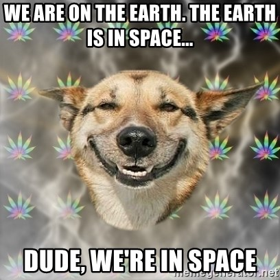 Stoner Dog - we are on the earth. the earth is in space... dude, we're in space
