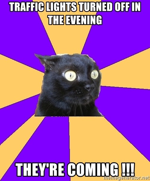 Anxiety Cat - tRAFFIC LIGHTS TURNED OFF IN THE EVENING THEY'RE COMING !!!