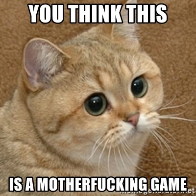 motherfucking game cat - you think this is a motherfucking game