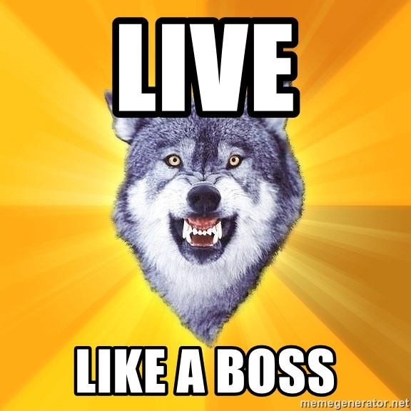 Courage Wolf - live like a boss