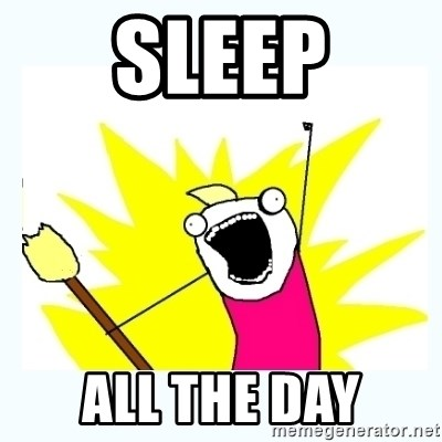 All the things - sleep all the day
