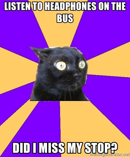 Anxiety Cat - listen to headphones on the bus did i miss my stop?