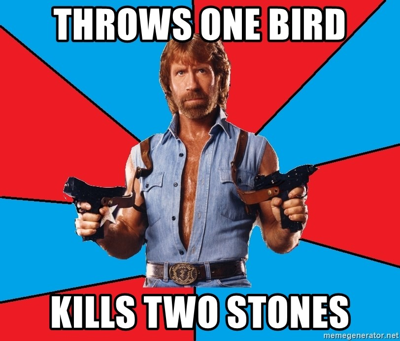Chuck Norris  - throws one bird kills two stones