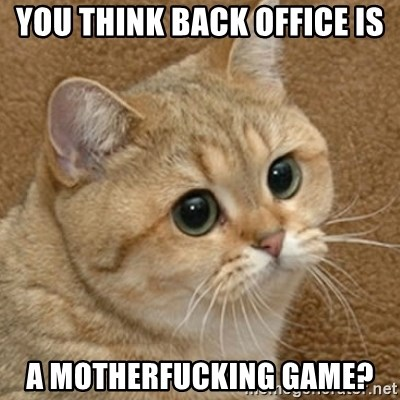 motherfucking game cat - You think back office is A motherfuckiNg game?