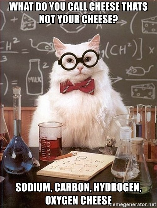 Science Cat - What do you call cheese thats not your cheese? Sodium, Carbon, Hydrogen, oxygen cheese