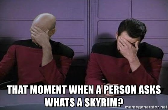 Doublefacepalm - that moment when a person asks whats a skyrim?