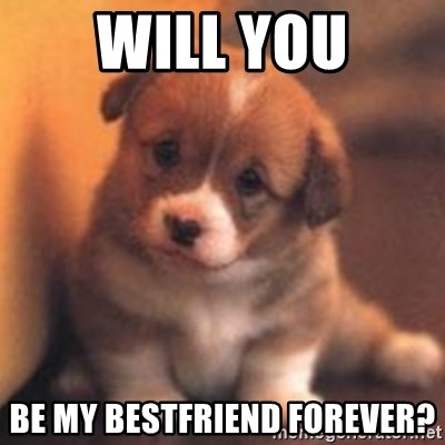 cute puppy - Will you Be my bEstfriend forever?