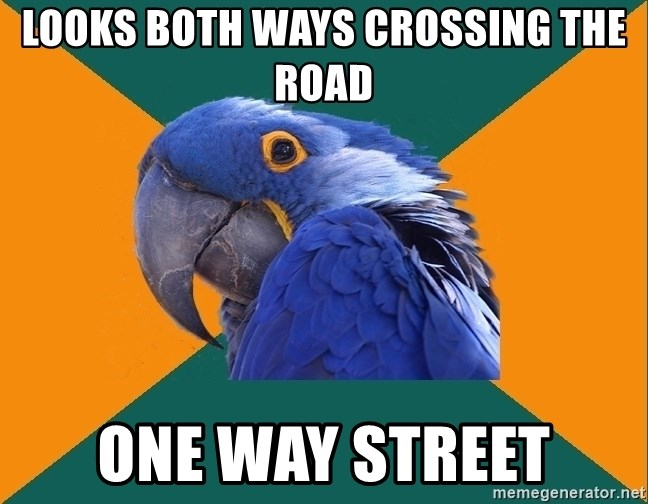 Paranoid Parrot - looks both ways crossing the road one way street
