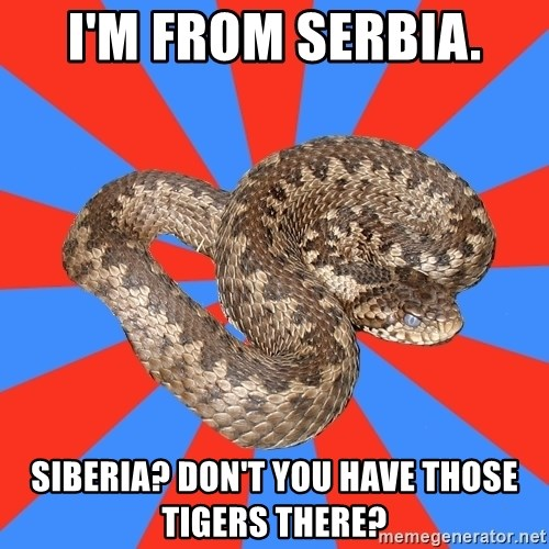 Eastern European Enthusiast Snake - I'm from Serbia. Siberia? don't you have those tigers there?