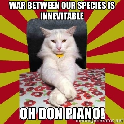 Dictator Cat - war between our species is innevitable oh don piano!