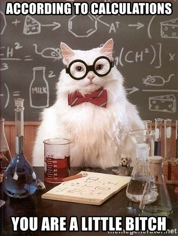 Chemist cat - according to calculations you are a little bitch