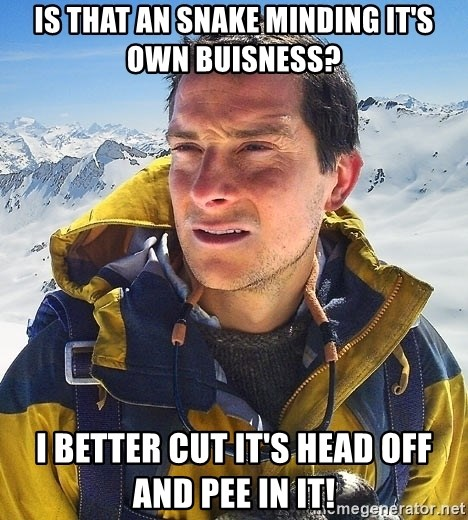Bear Grylls - Is that an snake minding it's own buisness? I better cut it's head off and pee in it!