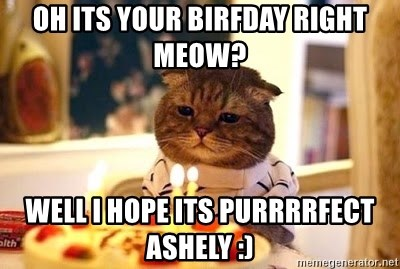 Birthday Cat - oh its your birfday right meow? well i hope its purrrrfect ashely :)