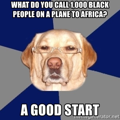 Racist Dog - What do you call 1,000 black people on a plane to africa?  A good start