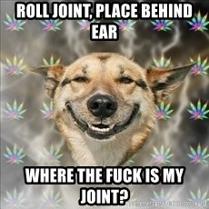 Original Stoner Dog - Roll joint, place behind ear Where the fuck is my joint?