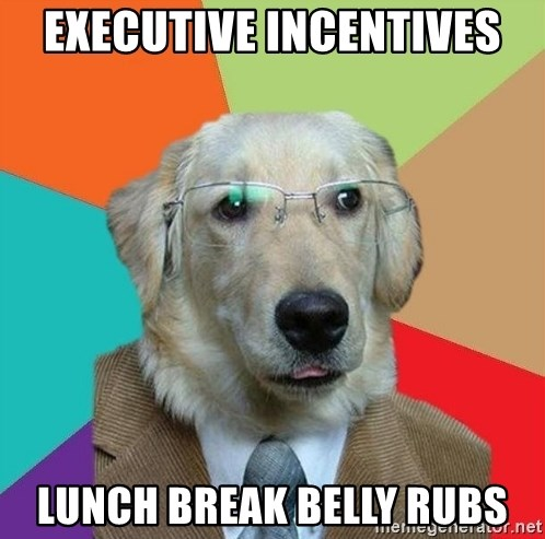 Business Dog - executive incentives lunch break belly rubs