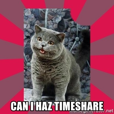I can haz - can i haz timeshare