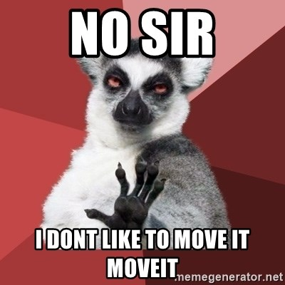 Chill Out Lemur - NO SIR i dont like to move it moveit