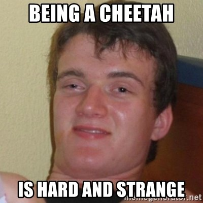 Really Stoned Guy - Being a cheetah is hard and strange