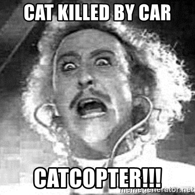 Frankenstein  - Cat killed by car catcopter!!!