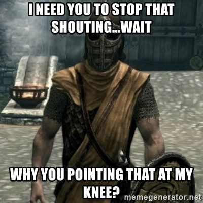 skyrim whiterun guard - I need you to stop that shouting...wait Why you pointing that at my knee?