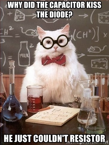 Chemist cat - Why did the capacitor kiss the diode?  He just couldn't resistor