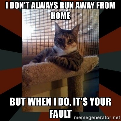 I Don T Always Run Away From Home But When I Do It S Your Fault The Most Interesting Cat In The World Meme Generator