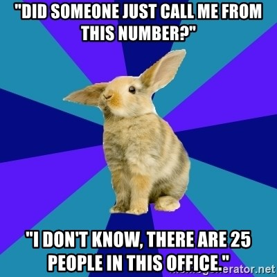 "Reception Rabbit - ""did someone just call me from this number?"" ""I don't know, there are 25 people in this office."""