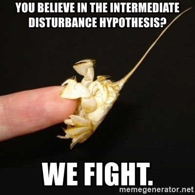 Fighty crab - You believe in the intermediate disturbance hypothesis? We fight.
